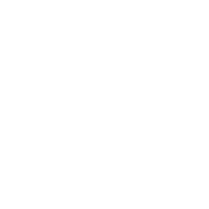 fighters-blueprint-logo